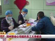 视频新闻|邳州移动公司组织员工义务献血