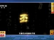 视频新闻 大型纪录片《中国影像方志·江苏卷·邳州篇》在央视首播