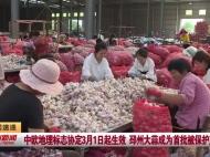 视频新闻 中欧地理标志协定3月1日起生效 邳州大蒜成为首批被保护产品
