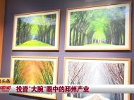"""视频新闻丨投资""""大腕""""眼中的邳州产业"""