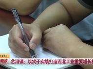 视频新闻丨岔河镇:以实干实绩打造西北工业重要增长极