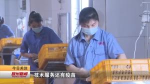 视频新闻丨戴庄镇:主动靠前服务 推进在建项目建设