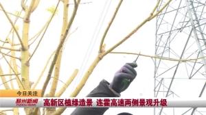 视频新闻|高新区植绿造景 连霍高速两侧景观升级