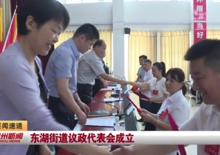 视频新闻丨东湖街道议政代表会成立