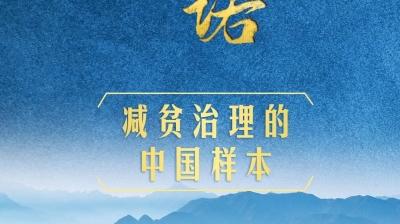 庄严承诺丨减贫治理的中国样本