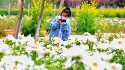 """绿色染出""""红日子""""!看徐州铜山生态文明建设如何助力乡村振兴"""