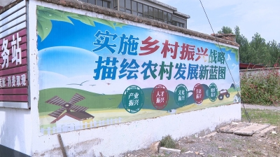 """邳州这三镇的环境卫生情况如何?创文办开展""""回头看"""""""