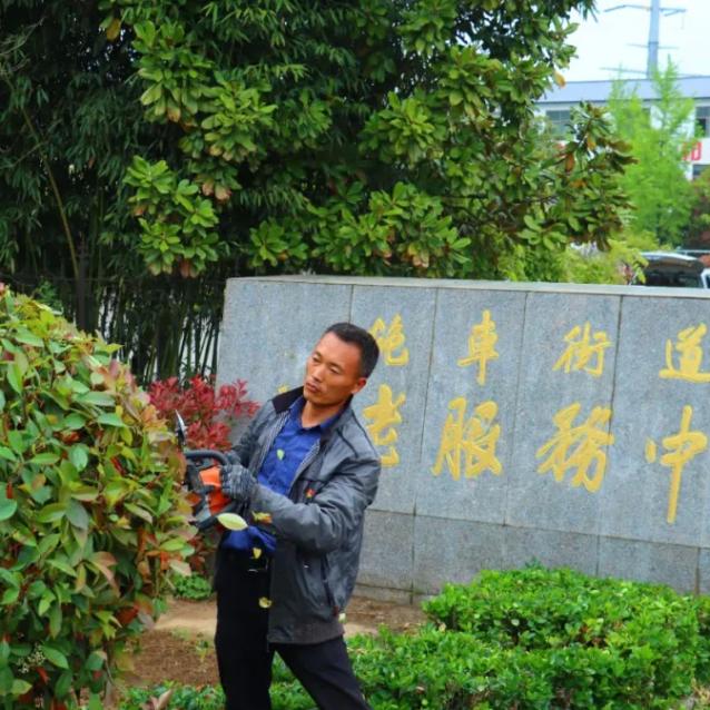 锤炼党性修养!邳州园林绿化部门党员开展义剪志愿服务活动